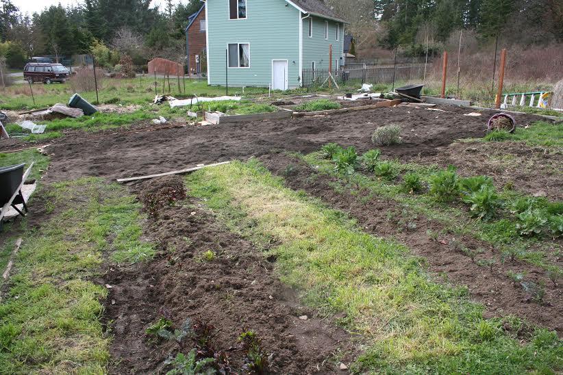 Quimper Grange Community Food Bank Garden ©Emily Vagts
